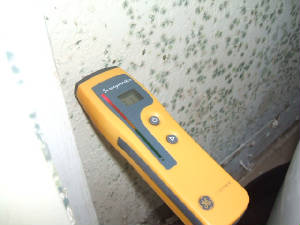 mold growth and moisture meter on wall